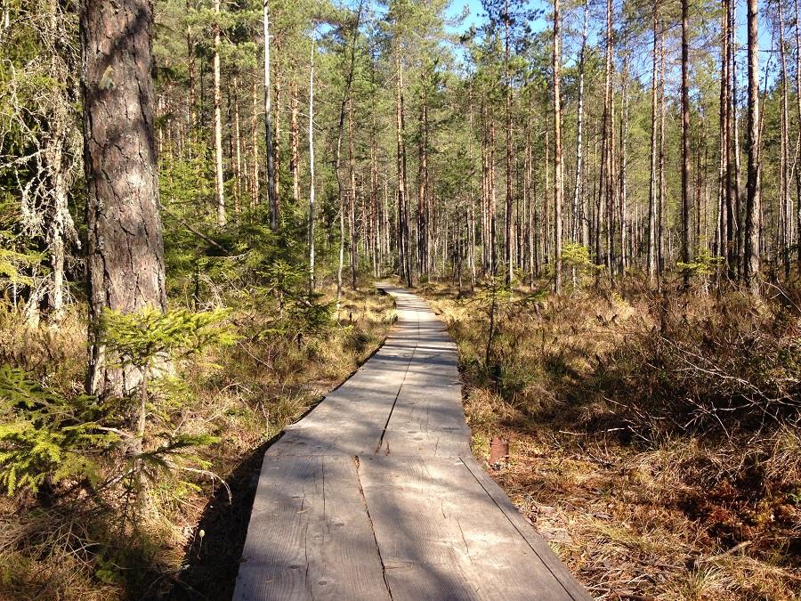 Lähtö-Puolison-kanssa-ulkomaille-Sini-Rantakari.jpg